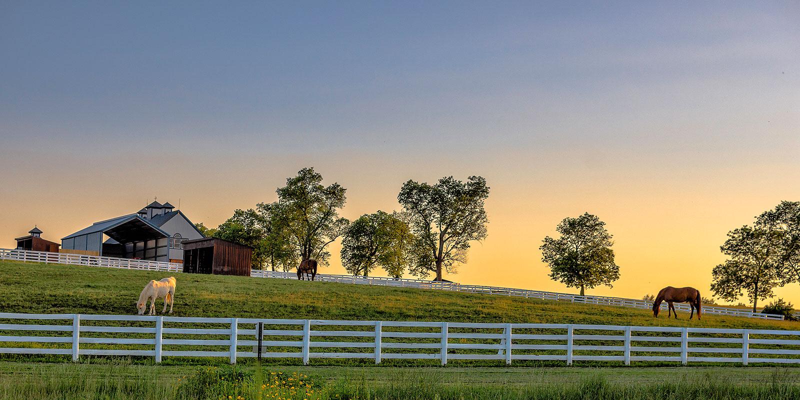 Ranch property in Aledo, Texas